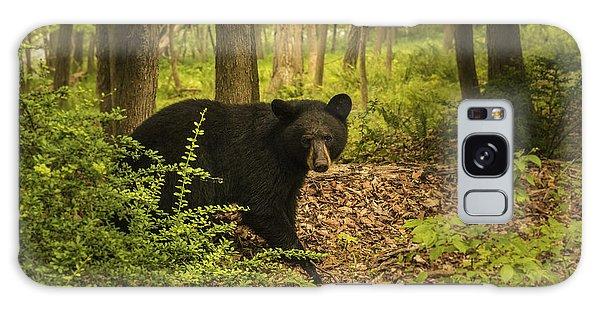 Yearling Black Bear Galaxy Case