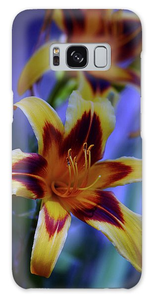 Yellow And Orange And Garnet Daylilies 1270 H_2 Galaxy Case