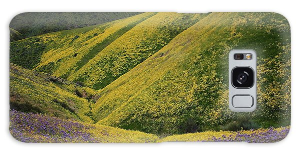 Yellow And Purple Wildlflowers Adourn The Temblor Range At Carrizo Plain National Monument Galaxy Case