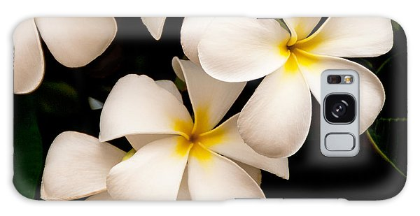 Scenery Galaxy Case - Yellow And White Plumeria by Brian Harig