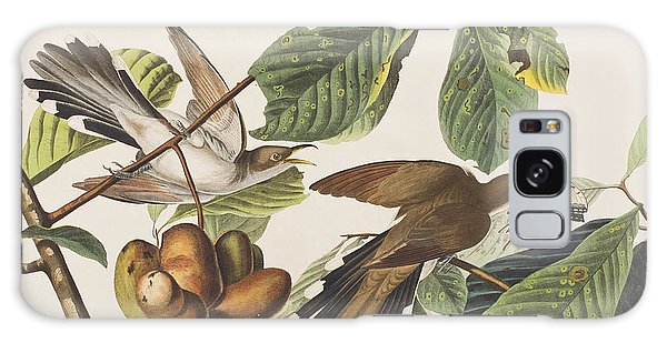 Yellow Billed Cuckoo Galaxy Case by John James Audubon