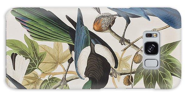 Yellow-billed Magpie Stellers Jay Ultramarine Jay Clark's Crow Galaxy Case