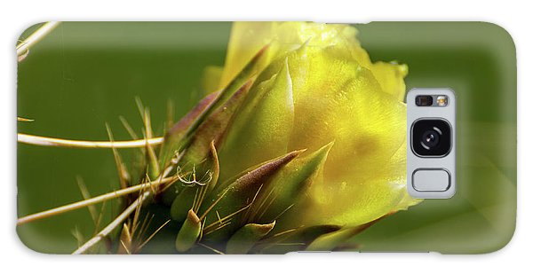 Yellow Cactus Flower Galaxy Case