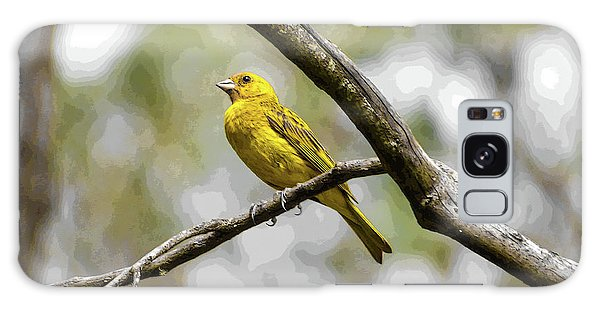 Yellow Canary Galaxy Case