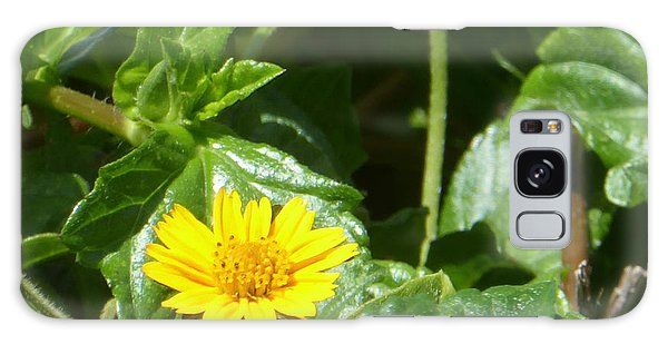 Yellow Caribbean Flower Galaxy Case by Margaret Brooks