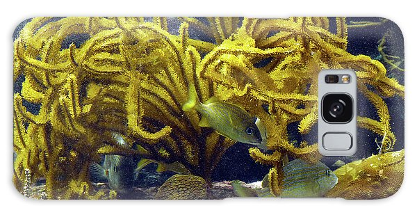 Galaxy Case featuring the photograph Yellow Coral Dance by Francesca Mackenney