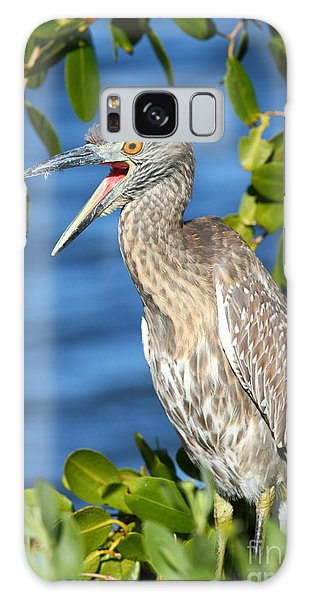 Yellow-crowned Night Heron Galaxy Case by Jennifer Zelik