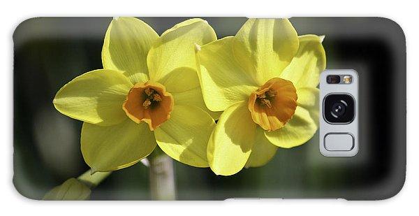 Yellow Daffodils 2 Galaxy Case