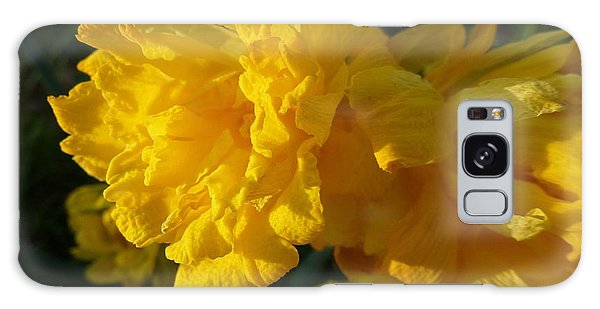 Yellow Daffodils Galaxy Case