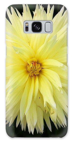 Yellow Dahlia Galaxy Case