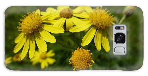 Yellow Daisies 2 Galaxy Case