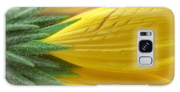 Yellow Daisy Macro Galaxy Case by Nicolas Raymond