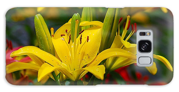 Yellow Day Lily 20120614_55a Galaxy Case by Tina Hopkins