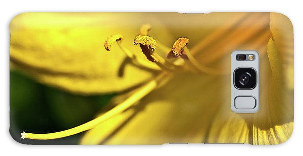 Yellow Daylily Galaxy Case