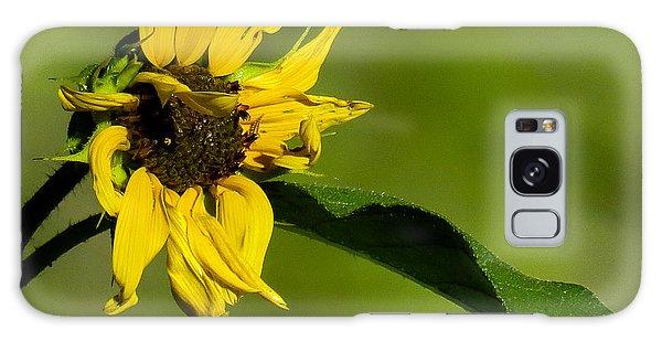 Yellow Flower 1 Galaxy Case