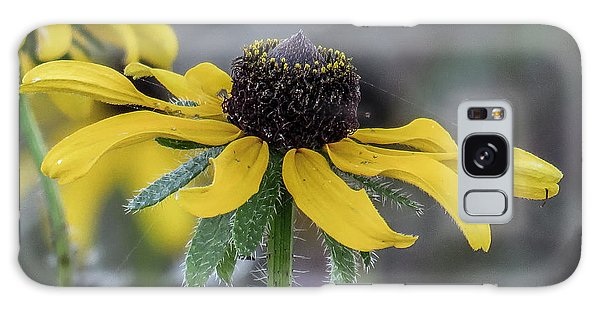 Yellow Flower 6 Galaxy Case