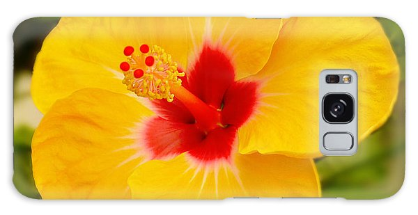 Hibiscus Galaxy Case - Yellow Hibiscus by Mike McGlothlen