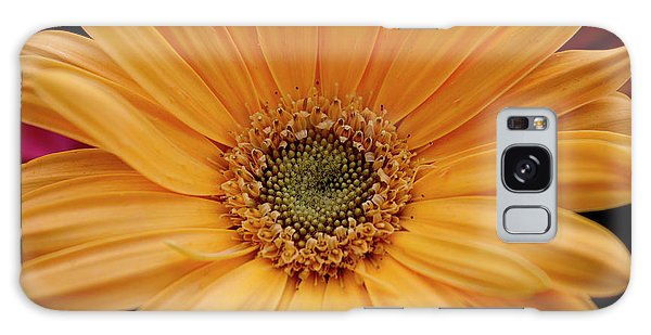 Yellow Gerbera Daisy Galaxy Case by Ivete Basso Photography