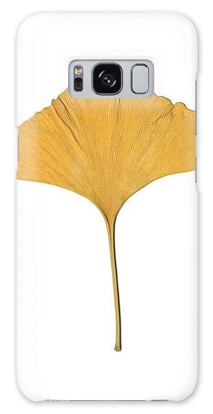 Yellow Ginkgo Leaf Galaxy Case