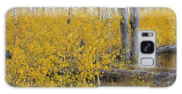 Yellow In Grand Teton Galaxy Case