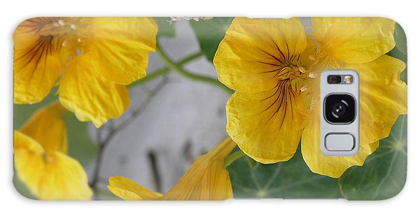Yellow Nasturtium Galaxy Case