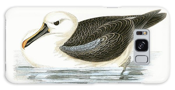 Albatross Galaxy Case - Yellow Nosed Albatross by English School