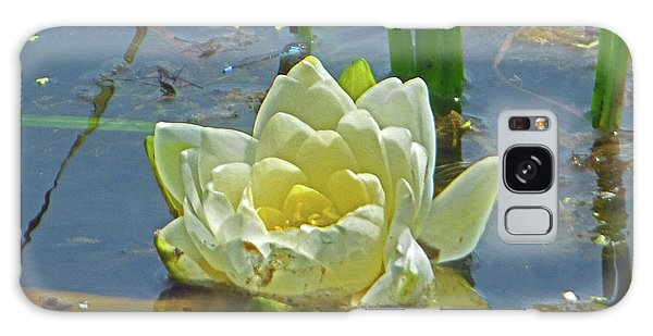 Yellow Nymphaea Alba Damselfy Galaxy Case