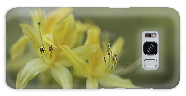 Yellow Rhodo Galaxy Case