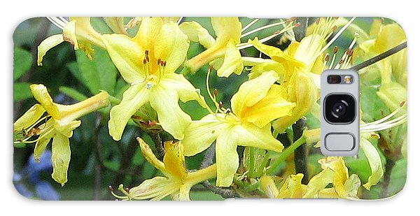 Yellow Rhododendron Galaxy Case by Carla Parris