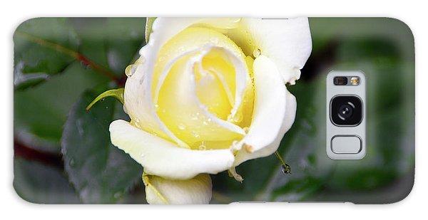 Yellow Rose 1 Galaxy Case