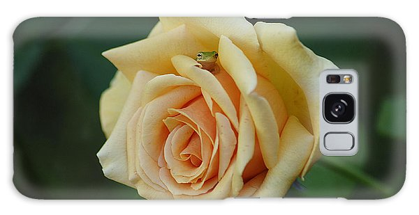Yellow Rose And Frog Galaxy Case