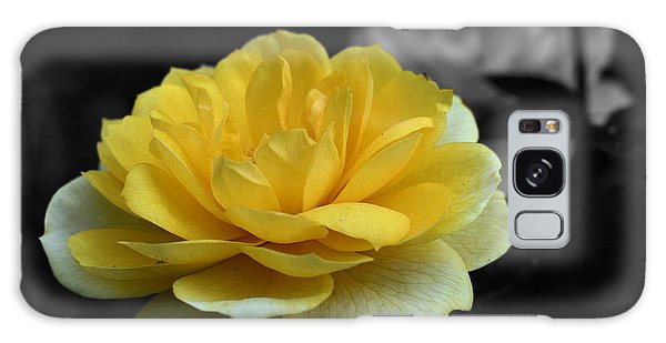 Yellow Rose In Bloom Galaxy Case