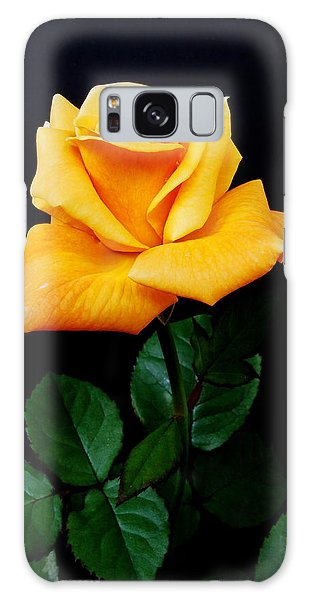 Yellow Rose Galaxy Case by Michael Peychich