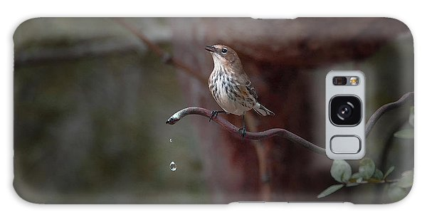 Yellow-rumped Warbler At Water Spout Galaxy Case