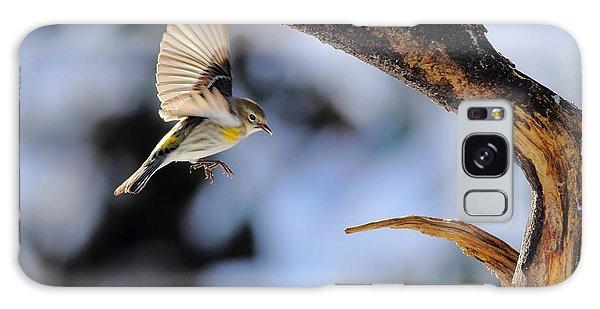 Yellow-rumped Warbler Landing Galaxy Case