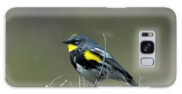 Yellow-rumped Warbler Galaxy Case by Mike Dawson