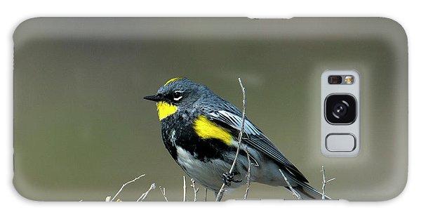Yellow-rumped Warbler Galaxy Case