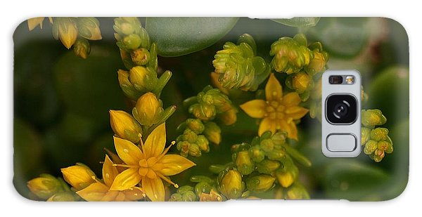 Yellow Sedum Galaxy Case