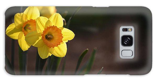 Yellow Spring Daffodils Galaxy Case