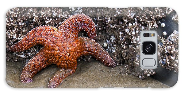 Orange Starfish On Beach #4 Galaxy Case
