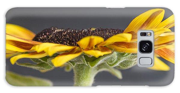 Yellow Sunflower Fine Art Wall Decor Galaxy Case