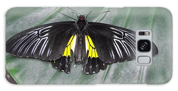 Golden Birdwing Galaxy Case by David and Lynn Keller