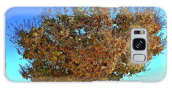 Yellow Tree Blue Sky Galaxy Case by Matt Harang