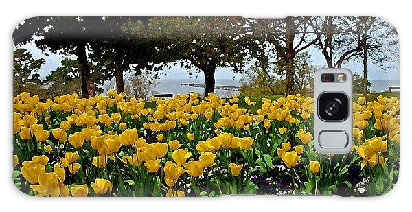Yellow Tulips Of Fairhope Alabama Galaxy Case