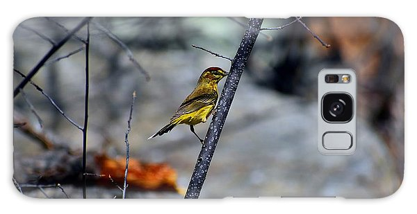 Yellow Warbler 2 Galaxy Case