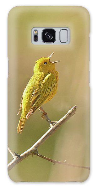 Yellow Warbler Song Galaxy Case