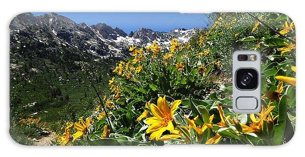 Yellow Wildflowers Galaxy Case by Alan Socolik
