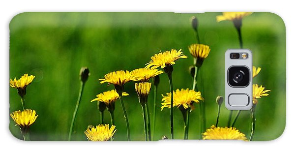 Yellow Wildflowers Galaxy Case