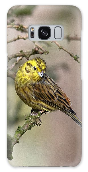 Yellowhammer Galaxy Case