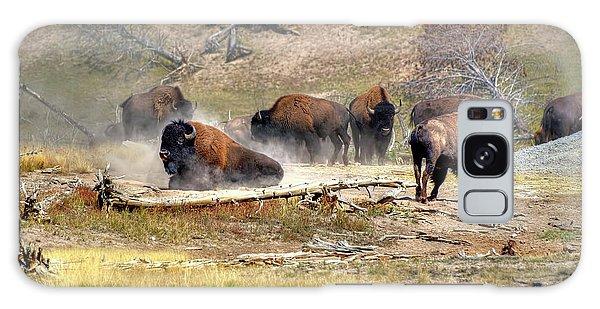 Yellowstone Buffalo- Fine Art Photograph Galaxy Case